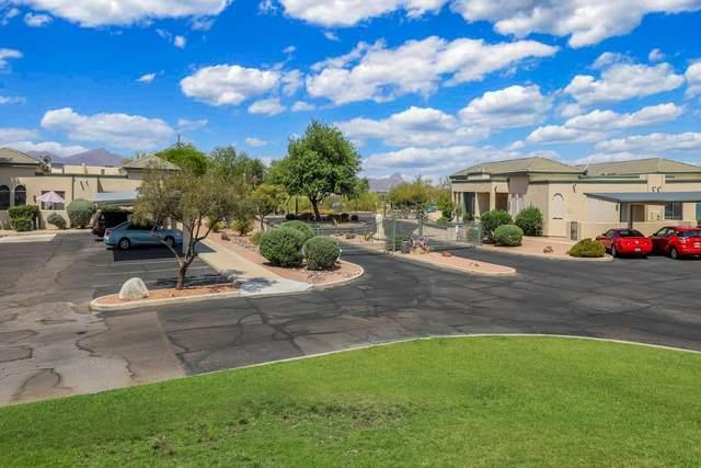 2379 W Via Di Silvio, Tucson, AZ 85741 (#22114402) :: Kino Abrams brokered by Tierra Antigua Realty