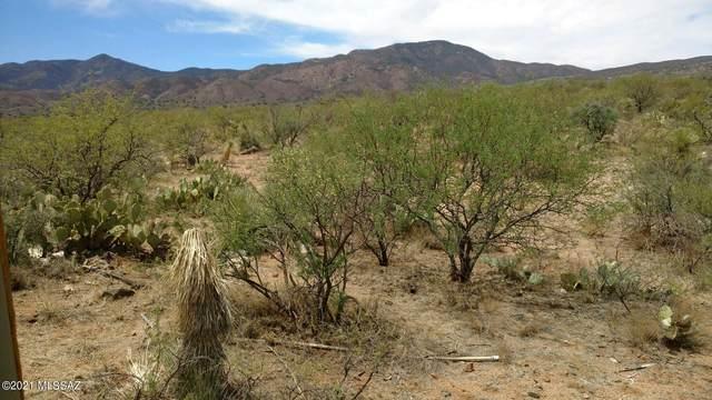 E Goldbug And Apache Girl Lane 4 Acres, Oracle, AZ 85623 (#22114539) :: The Local Real Estate Group | Realty Executives