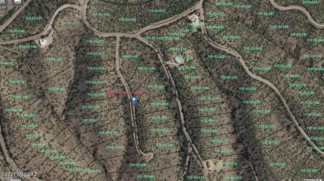 1155 Cholla Court #16, Rio Rico, AZ 85648 (#22114775) :: Kino Abrams brokered by Tierra Antigua Realty
