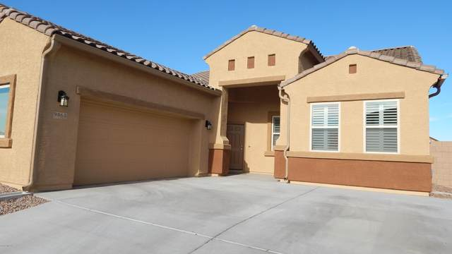 9863 N Howling Wolf Road, Marana, AZ 85743 (#22115191) :: Tucson Real Estate Group