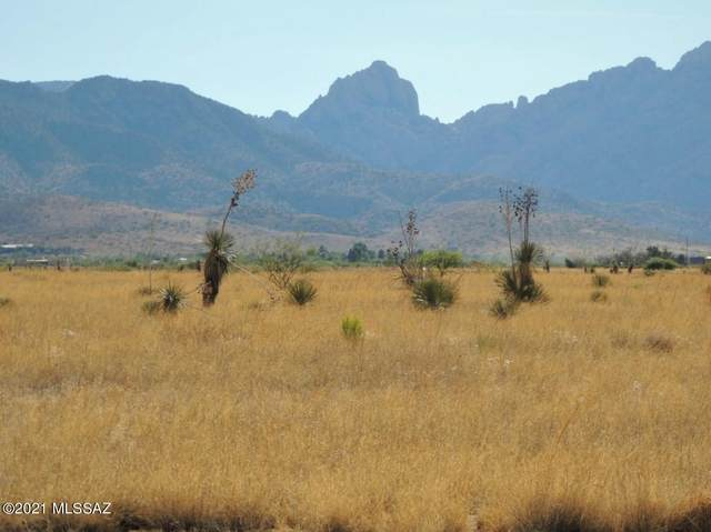 13.43 Acre Windsong Ln W Of Willcox Rd #4, Pearce, AZ 85625 (#22115240) :: Long Realty - The Vallee Gold Team
