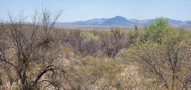 12454 S Agua Verde Road, Vail, AZ 85641 (#22115341) :: Kino Abrams brokered by Tierra Antigua Realty