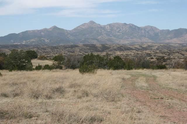 00 Kellogg Road Tbd, Sonoita, AZ 85637 (MLS #22115428) :: The Luna Team