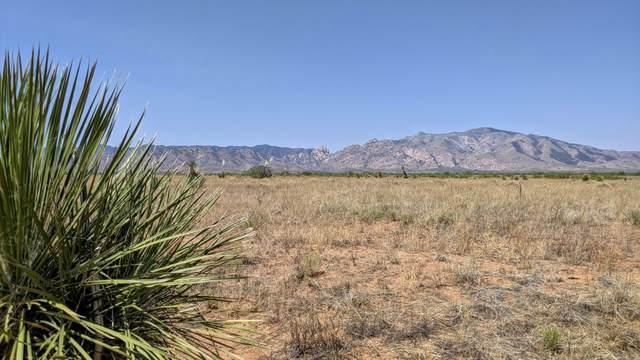 17 Acre Off N. Cloud Road -, Pearce, AZ 85625 (MLS #22115432) :: The Luna Team