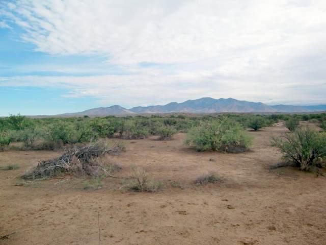 27490 Bonita Klondyke Road #124, Willcox, AZ 85643 (MLS #22115434) :: The Property Partners at eXp Realty