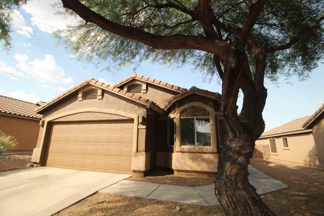 39177 S Rodeo Buckle Drive, Tucson, AZ 85739 (#22115487) :: The Dream Team AZ