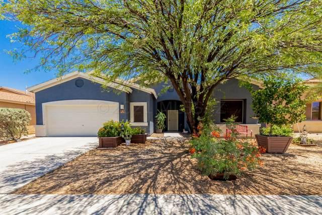 6771 S Camino Catalan, Tucson, AZ 85757 (#22115515) :: Kino Abrams brokered by Tierra Antigua Realty