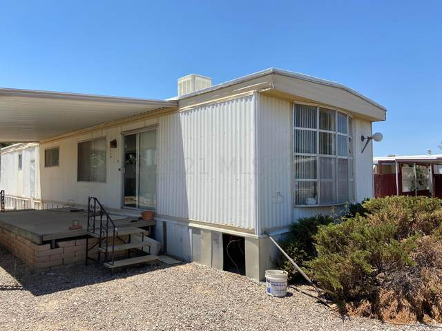 3431 W Mango Drive, Tucson, AZ 85741 (#22115556) :: Kino Abrams brokered by Tierra Antigua Realty