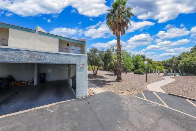 2779 W Anklam Road F, Tucson, AZ 85745 (#22115672) :: Kino Abrams brokered by Tierra Antigua Realty