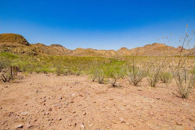 TBD Aliso Springs Road N/A, Tubac, AZ 85646 (#22115708) :: Gateway Partners International