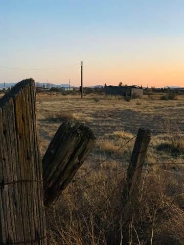 TBD Hobbs Road /12, Willcox, AZ 85643 (MLS #22115757) :: The Property Partners at eXp Realty
