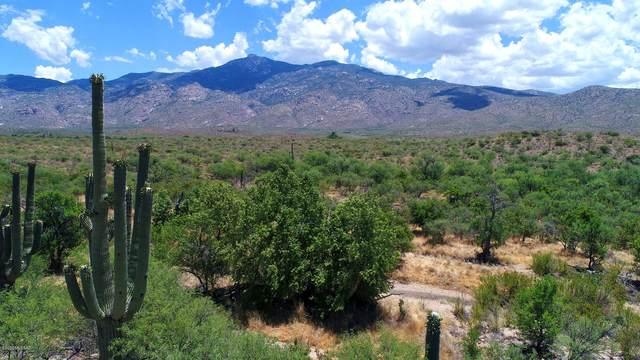 6550 S X9 Ranch Road #69, Vail, AZ 85641 (#22115797) :: The Dream Team AZ