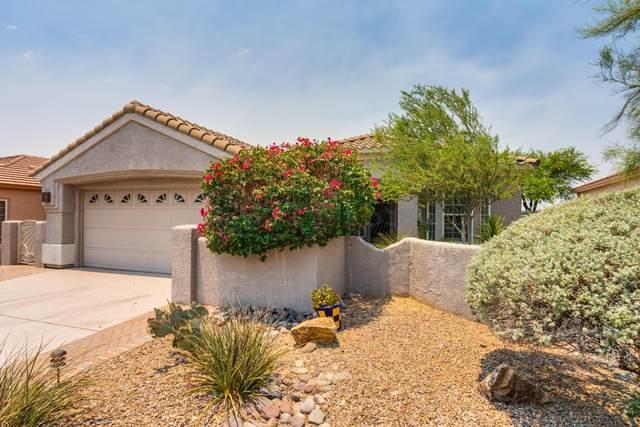 13541 N Sunset Mesa Drive, Marana, AZ 85658 (#22115798) :: The Dream Team AZ