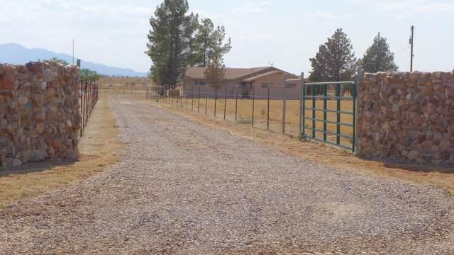 28280 S Rain Valley Road, Elgin, AZ 85611 (#22115819) :: Long Realty Company
