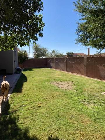 10351 N Fox Croft Lane, Oro Valley, AZ 85737 (#22115856) :: Kino Abrams brokered by Tierra Antigua Realty