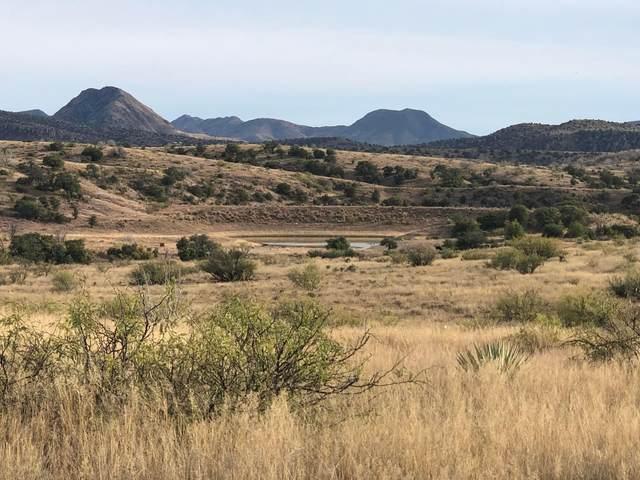 9800 N Bar Boot Ranch Road, Douglas, AZ 85607 (#22115942) :: Gateway Partners International