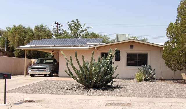 541 E Bromley Street, Tucson, AZ 85704 (#22115944) :: Kino Abrams brokered by Tierra Antigua Realty