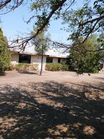 190 S Quail Drive, Willcox, AZ 85643 (#22115967) :: Keller Williams