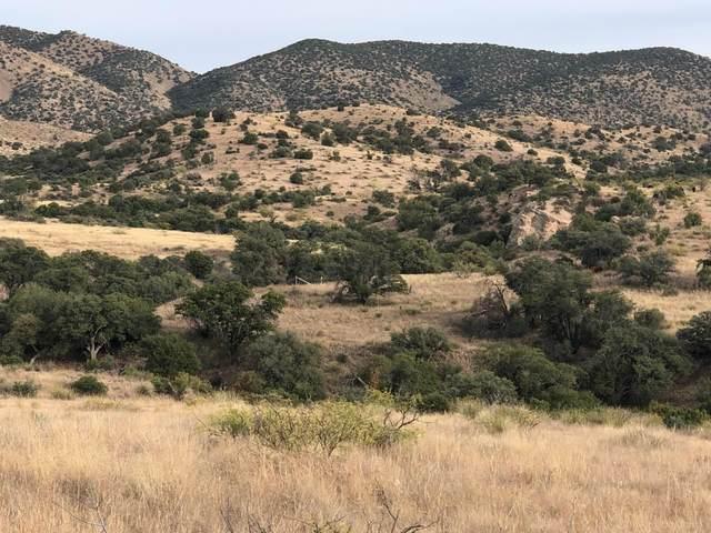 9800 N Bar Boot Ranch Road, Douglas, AZ 85607 (#22115970) :: Gateway Partners International