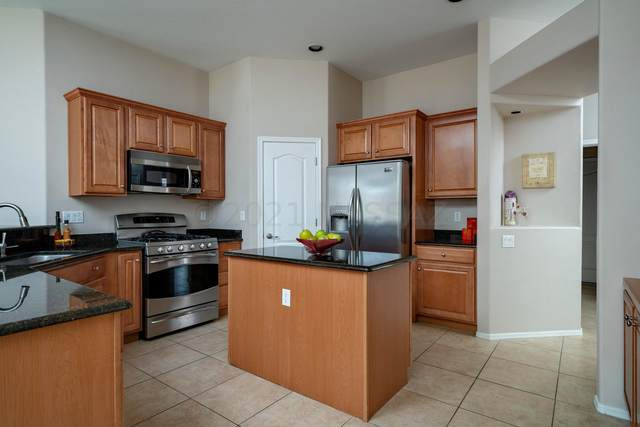14384 N Pipestone Place, Marana, AZ 85658 (#22116066) :: Gateway Partners International
