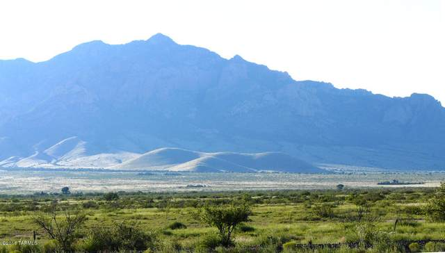40 ac S Mi Casita Road #0, Portal, AZ 85632 (#22116161) :: Long Realty - The Vallee Gold Team