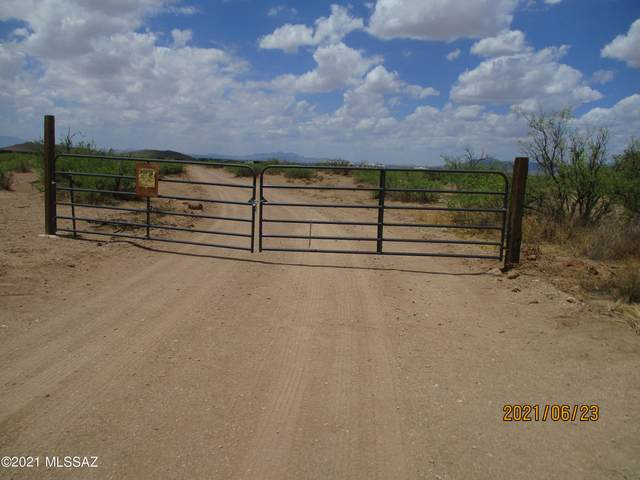 TBD Mesquite Road, Willcox, AZ 85643 (#22116455) :: Long Realty - The Vallee Gold Team