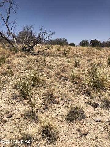 14 Sims Lane #64, Sonoita, AZ 85637 (#22116652) :: Tucson Real Estate Group