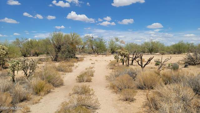 15220 W Many Horses Road, Tucson, AZ 85736 (#22117293) :: Long Realty - The Vallee Gold Team