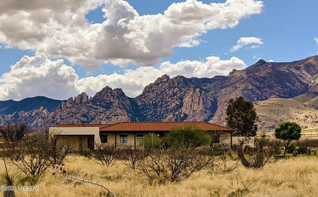1159 N Wild Eagle Place, Cochise, AZ 85606 (#22117453) :: Long Realty - The Vallee Gold Team