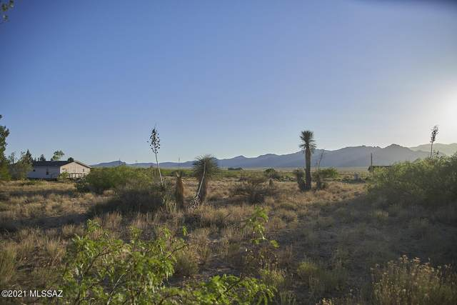 11383 N Dill Road, Portal, AZ 85632 (#22117702) :: Long Realty - The Vallee Gold Team