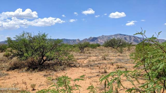 3.41 Acre On Ritchey Road -, Pearce, AZ 85625 (#22118110) :: Long Realty - The Vallee Gold Team