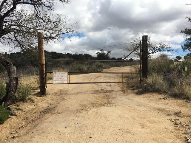 unassigned W Dogtown Road, Sahuarita, AZ 85629 (#22118180) :: Long Realty - The Vallee Gold Team