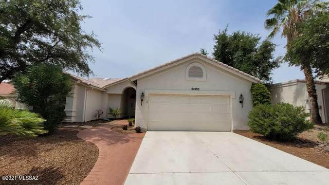 64483 E Sugar Lane, Tucson, AZ 85739 (#22118513) :: Long Realty - The Vallee Gold Team