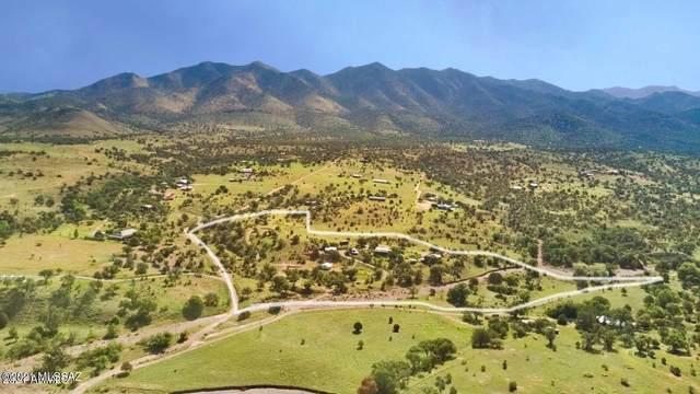 40 Brush Canyon Road, Elgin, AZ 85611 (#22118708) :: Tucson Real Estate Group