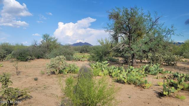 16206 W Powder Horn Drive #288, Tucson, AZ 85736 (#22118720) :: Long Realty - The Vallee Gold Team