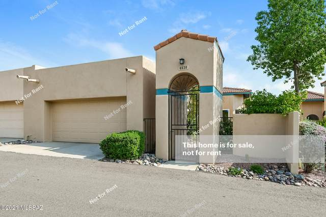 4630 E Red Mesa Drive, Tucson, AZ 85718 (#22118844) :: Long Realty - The Vallee Gold Team