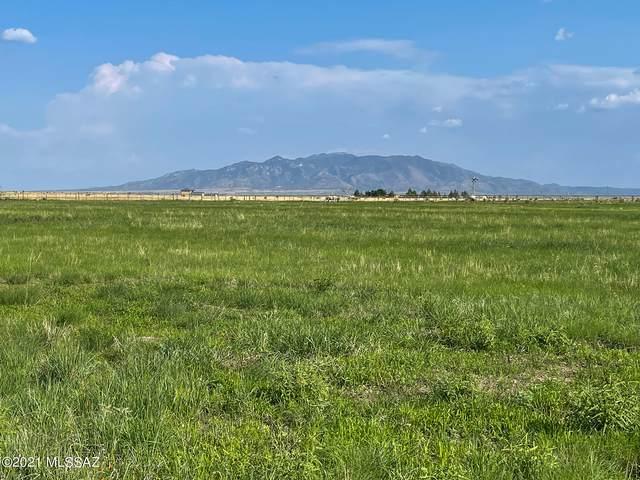 41 Roadog Way #0, Elgin, AZ 85611 (#22118923) :: Long Realty - The Vallee Gold Team