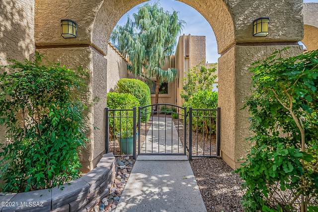 674 W Rushwood Drive, Tucson, AZ 85704 (#22118958) :: Long Realty - The Vallee Gold Team