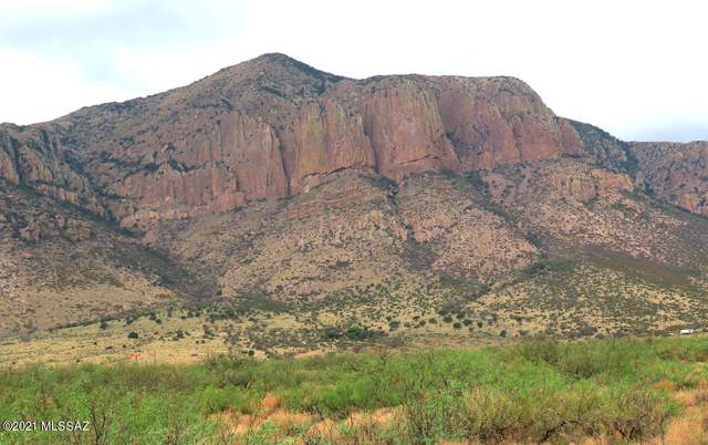 776 W Lone Pine W, Portal, AZ 85632 (#22119134) :: Luxury Group - Realty Executives Arizona Properties