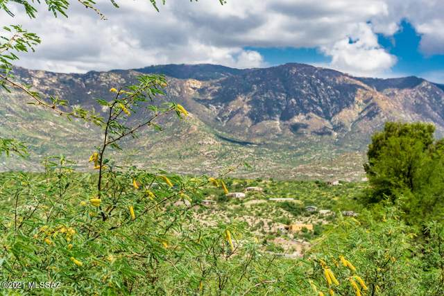 15335 N Lago Del Oro Parkway 1 AC, Tucson, AZ 85739 (#22119224) :: Long Realty Company