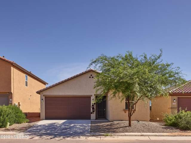 8553 W Amazilia Place, Tucson, AZ 85757 (#22119248) :: AZ Power Team