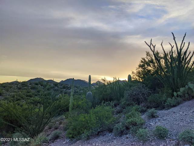 3075 W Placita Sierra Tortuga #6, Tucson, AZ 85745 (#22119383) :: Long Realty - The Vallee Gold Team