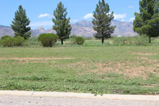 N Geneva Estates Road Par E,F, Pearce, AZ 85625 (#22119582) :: Tucson Real Estate Group