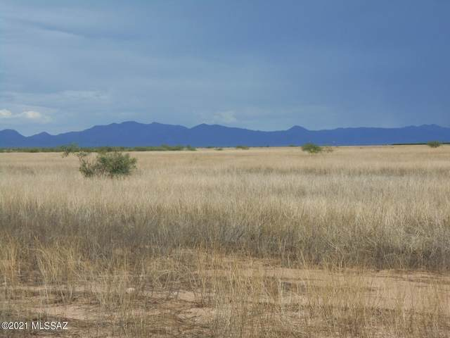 235 Acres Kimzey Road, Willcox, AZ 85643 (#22119730) :: Long Realty - The Vallee Gold Team