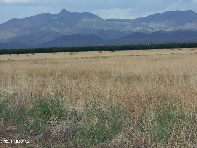 238 Acres Kimzey Road, Willcox, AZ 85643 (#22119731) :: Long Realty - The Vallee Gold Team