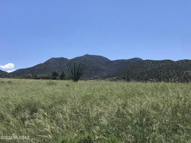 111 Red Mountain Court #21, Patagonia, AZ 85624 (#22120058) :: AZ Power Team
