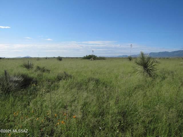 TBD Warner Street #5, Cochise, AZ 85606 (#22121284) :: The Dream Team AZ
