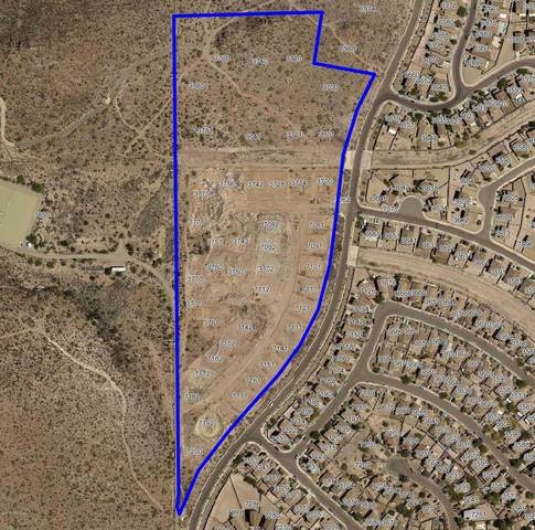 3700 S Avenida Vera Cruz Lane #778, Tucson, AZ 85746 (#22122464) :: Elite Home Advisors | Keller Williams
