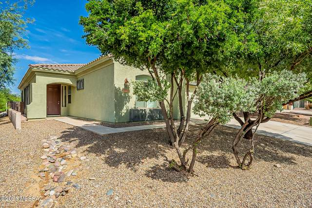 13719 N High Mountain View Place, Tucson, AZ 85739 (#22122564) :: Long Realty - The Vallee Gold Team