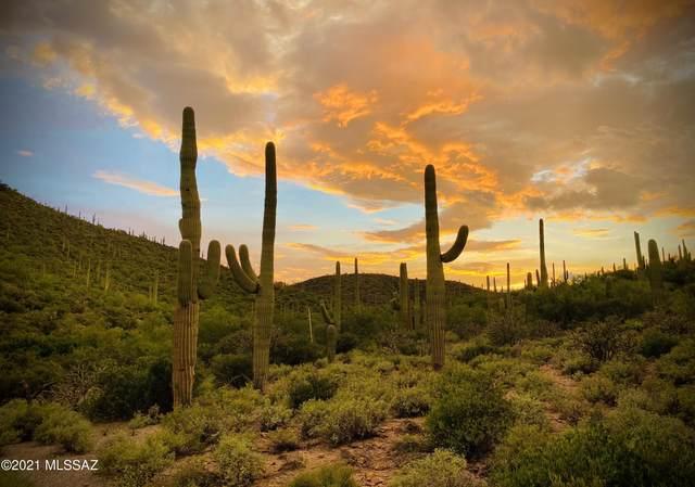870 N Canyon Moonlight Place #2, Tucson, AZ 85745 (#22122815) :: Elite Home Advisors | Keller Williams